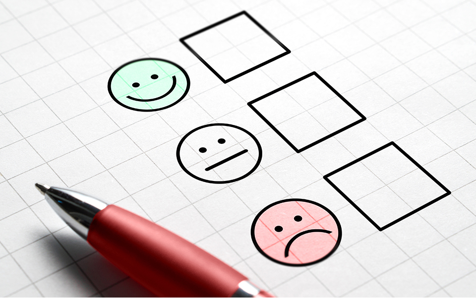 Employee Satisfaction Survey: